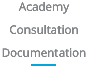 Academy Consultation Documentation